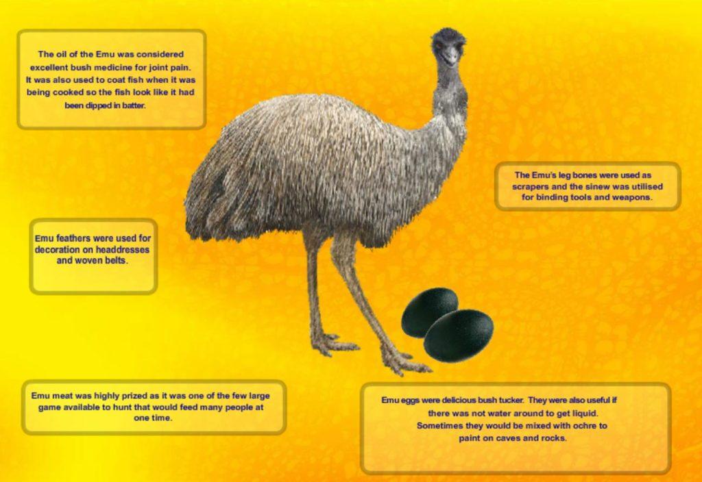 EmuPoster_Thumbnail