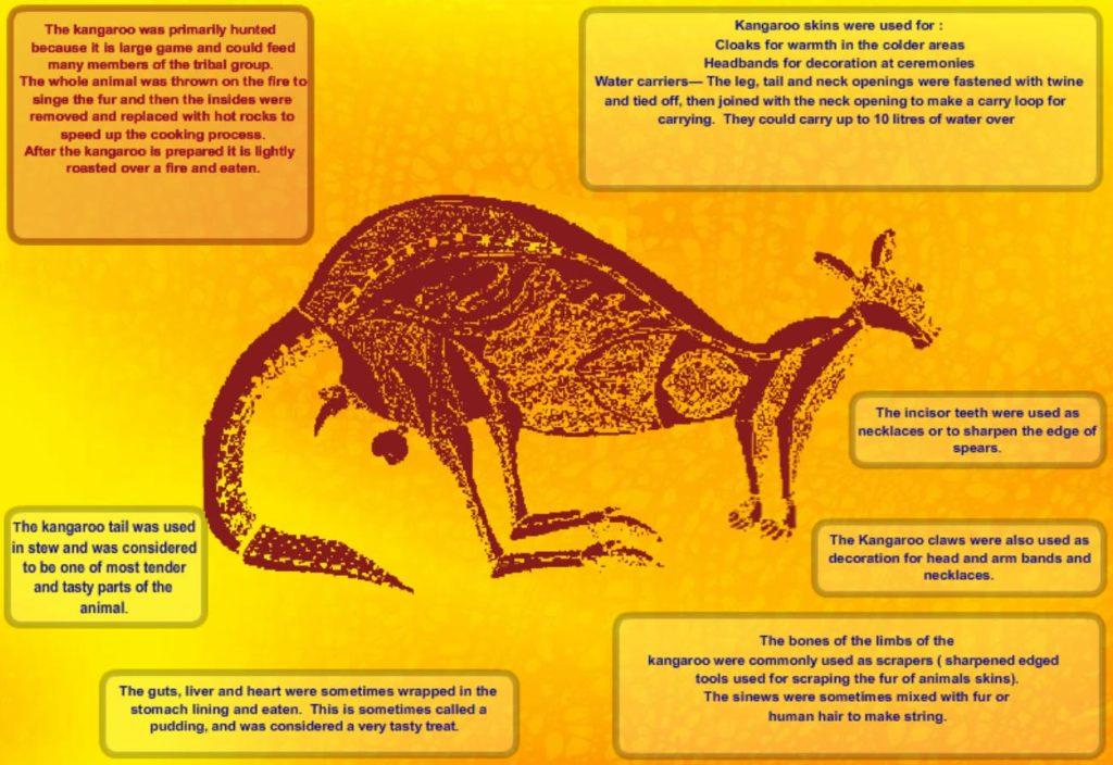 KangarooPoster_Thumbnail